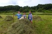 Karelia: summer work
