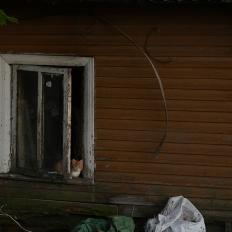 Leningrad oblast: Vanaküla (former Estonian village)